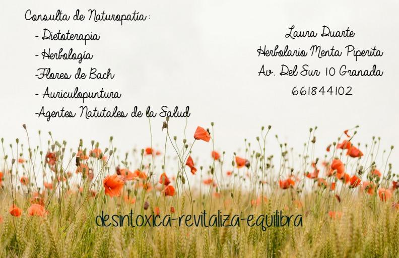 consulta-naturopatia